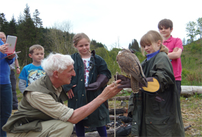 BIRD OF PREY AND FOREST ADVENTURE